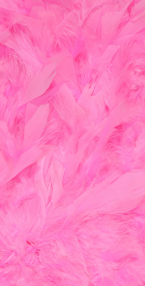 Pink Feathers Banner