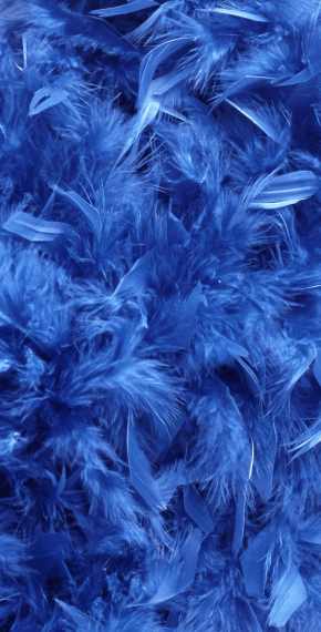Blue Feathers Banner