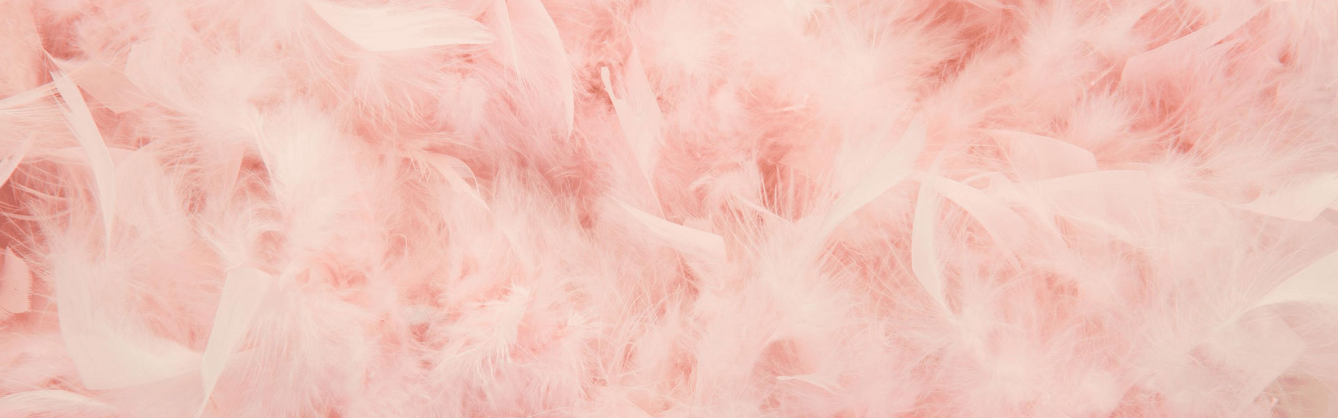 Pink Feather Banner