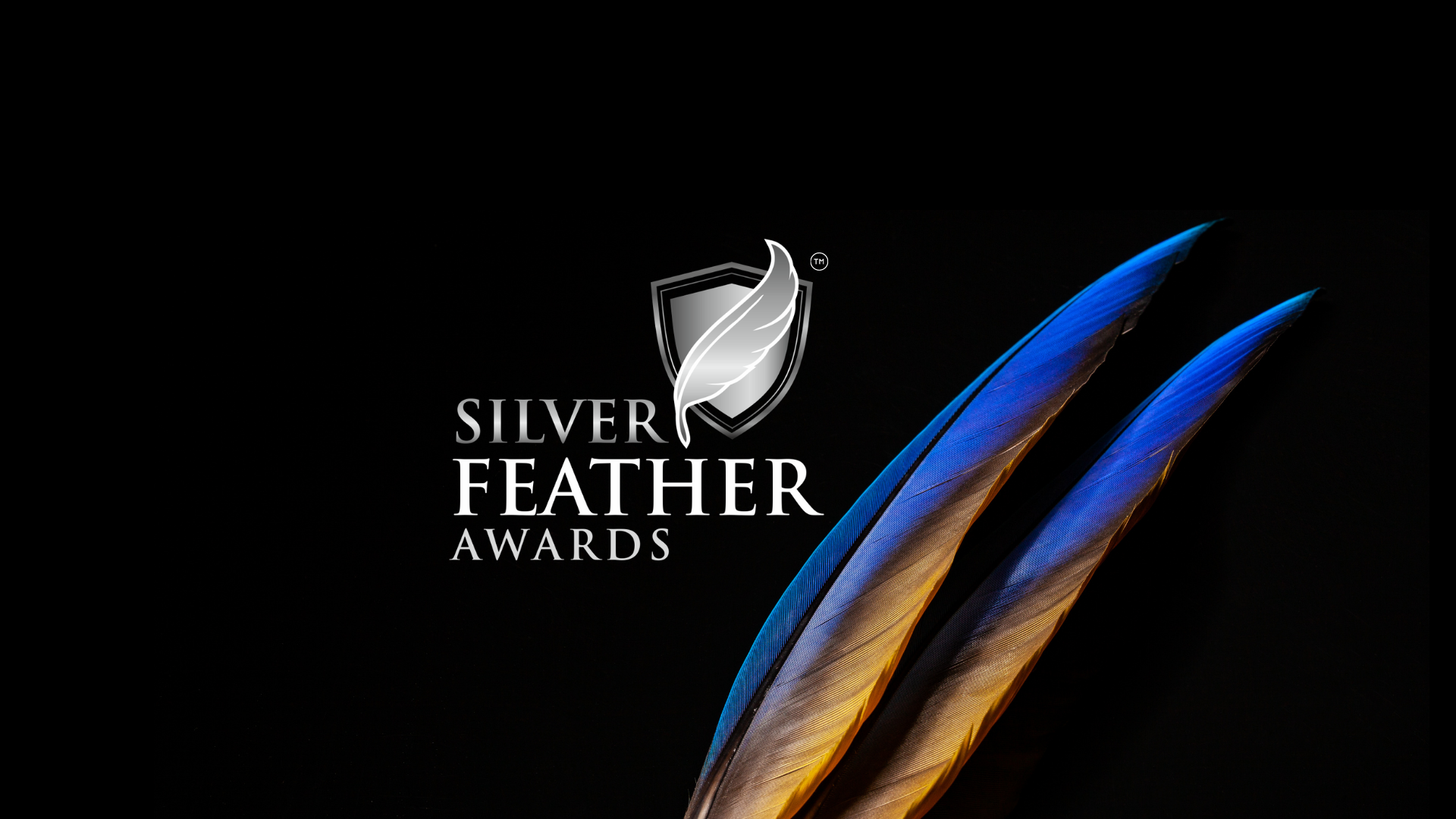 Silver Feather Awards - Feather Touch